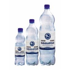 Минеральная вода павлодарская 0,5 л